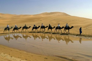 Tour Marocco in dromedario